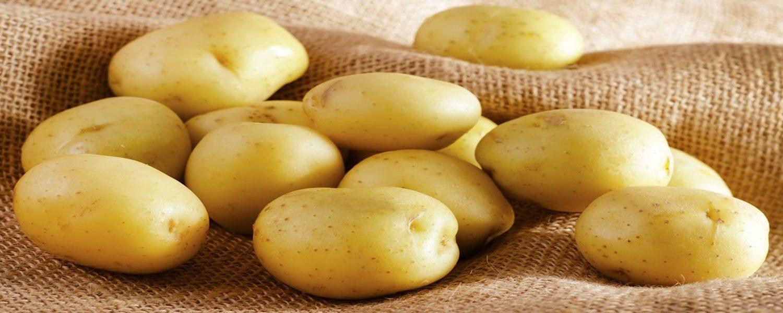 potato Hamadan