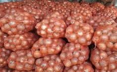 Onion from Iran