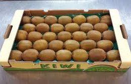 Kiwi from Iran