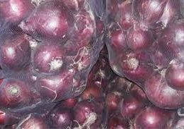 Red onion sale